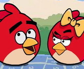 Rollende Angry Birds
